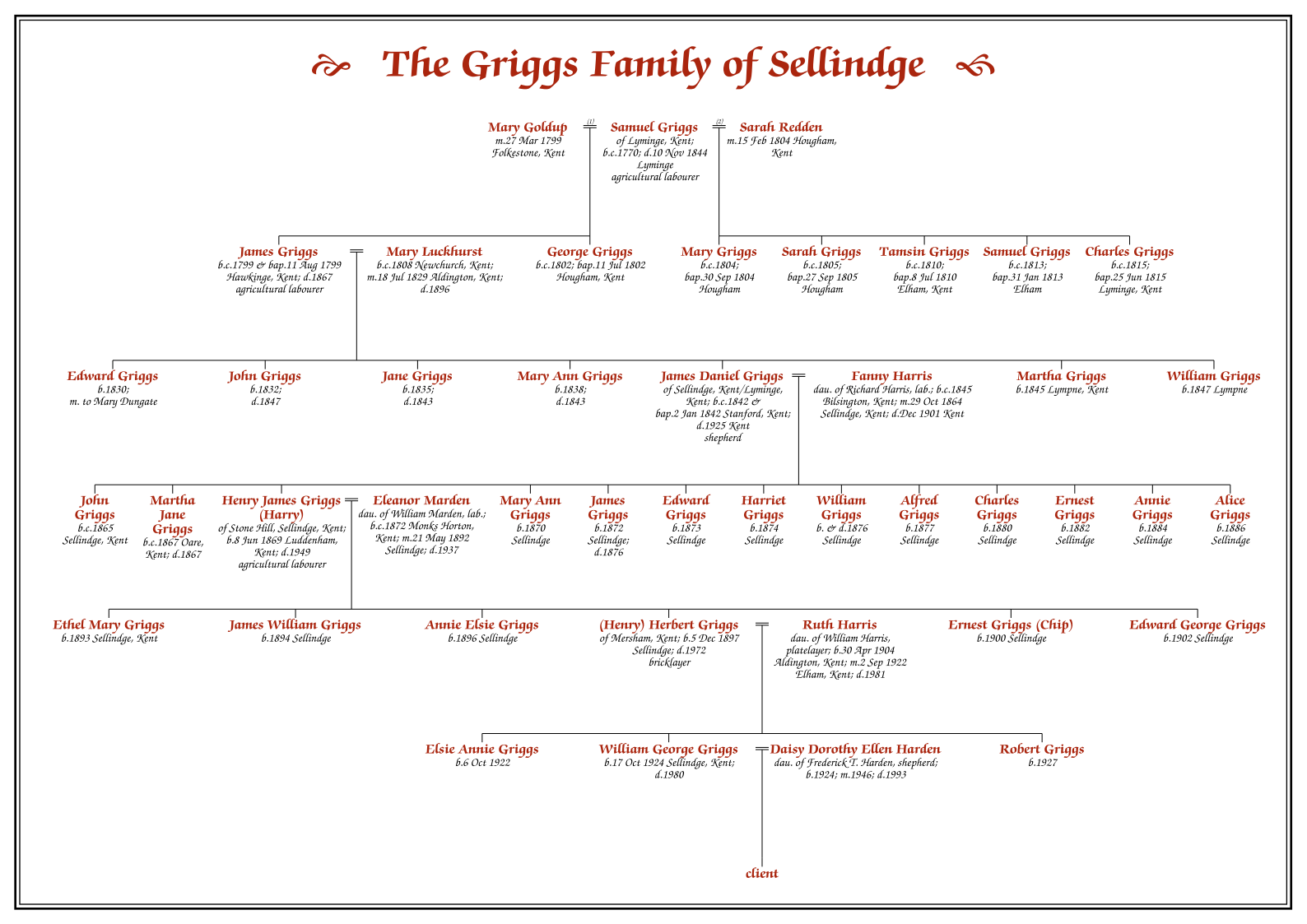 Dropline Pedigree Chart Family Tree